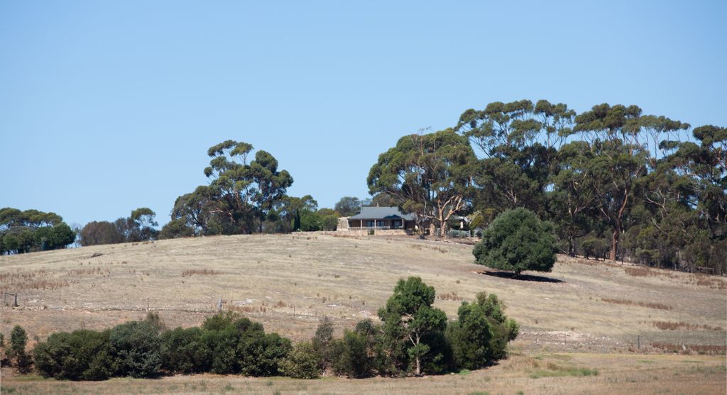 Farm, Salt Creek SA
