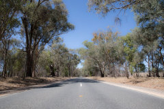 Strasse nach Beechworth, VIC