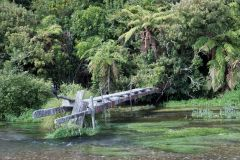 Blue Springs NZ