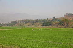 Hsipaw MY