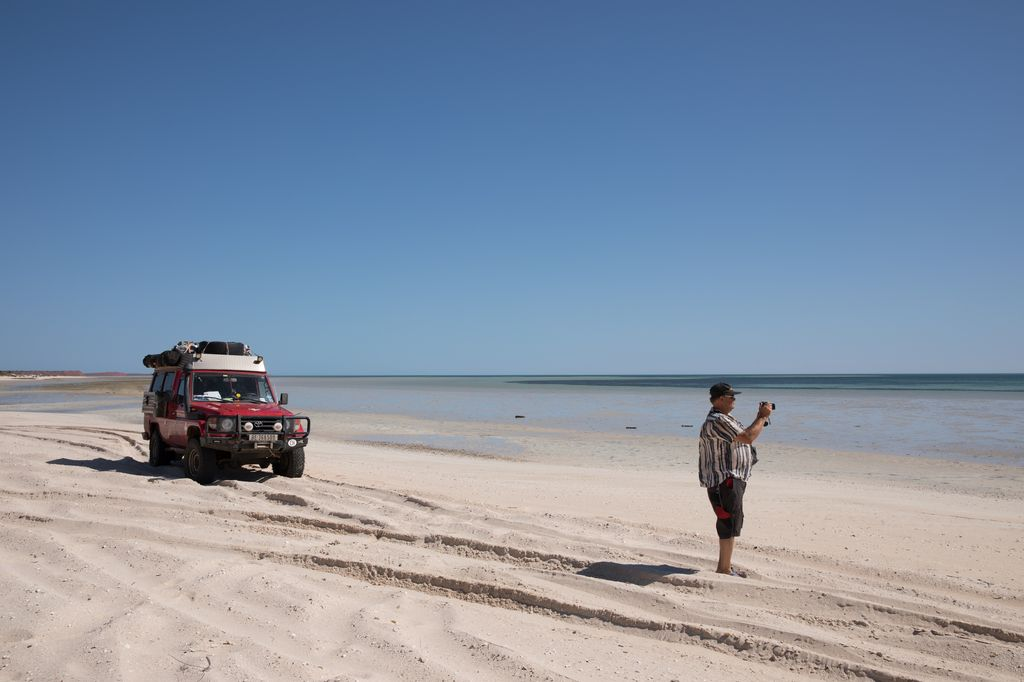 Shark Bay, WA AUS